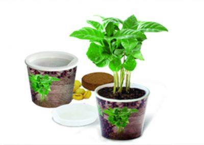 Grünes, Wachstum sowie Pflanzen & Samen als Werbeartikel